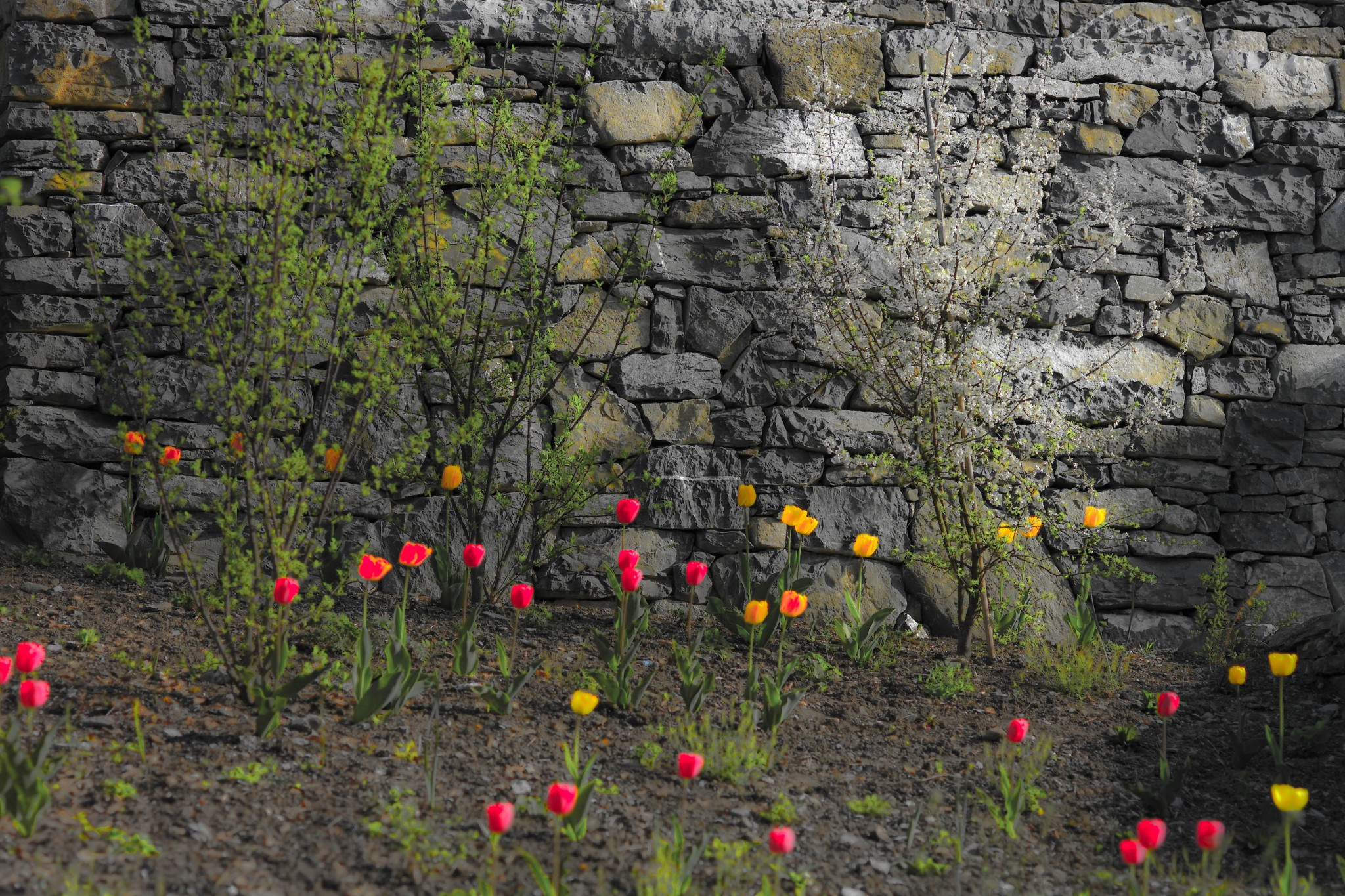 terrassen – stufen – plätze – naturgestaltung