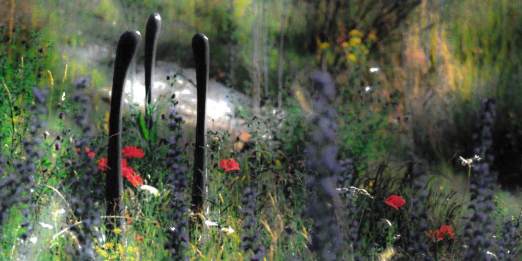 Wir erschaffen artenreiche Blumenwiesen oder Polsterrasen und wissen diese still von Hand zu schneiden.